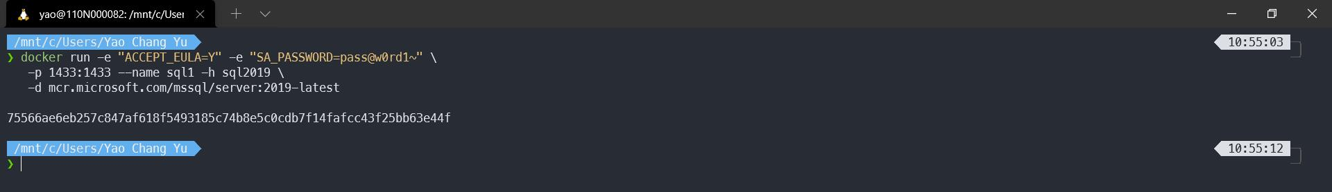 o  x  ) docker run -e —e  —name sqtl —h sqt2019  -p 1433:1433  75566aeoeb257c847af618f5493185c74b8e5cøcdb7f14fafcc43f25bb63e44f